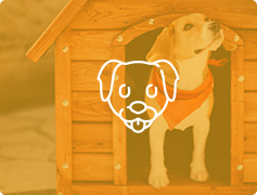 Dog in a dog house with dog face overlay